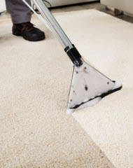 Carpet Steam Cleaning in Concord