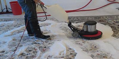rug area cleaning shampoo oriental rug